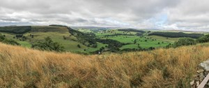 View up the Valley towards Reeth
